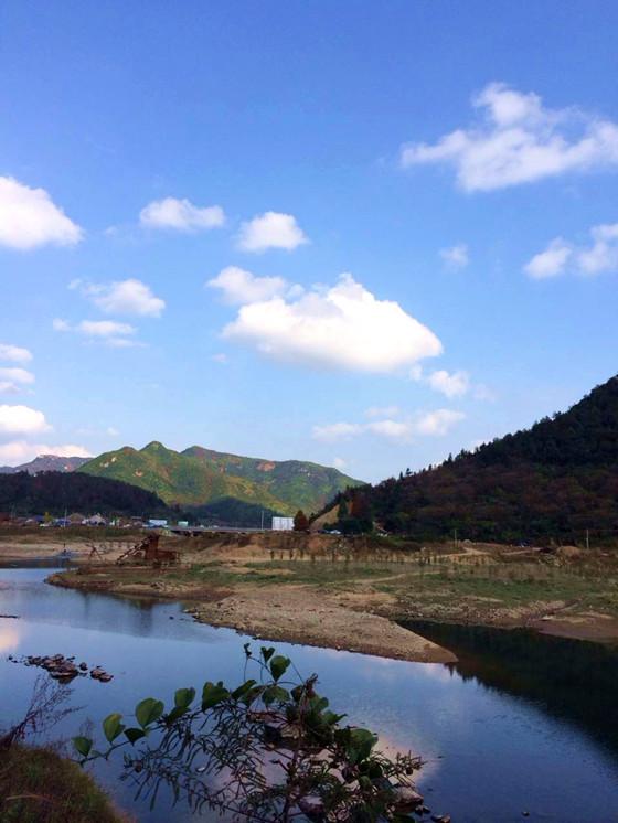临海小芝镇里的红树林近几年成为了台州市内比较热门的旅游景区,眼下