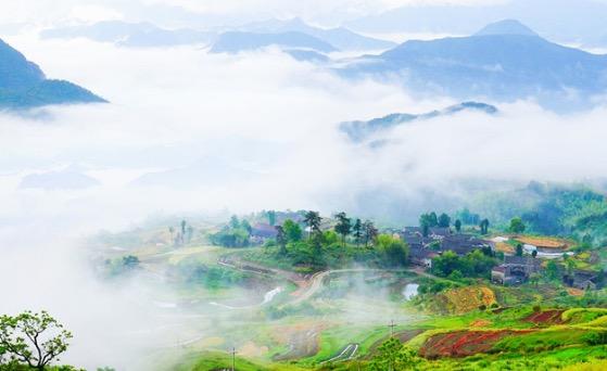 哇,仙境!仙居杨丰山的梯田云雾缭绕,美如梦幻!