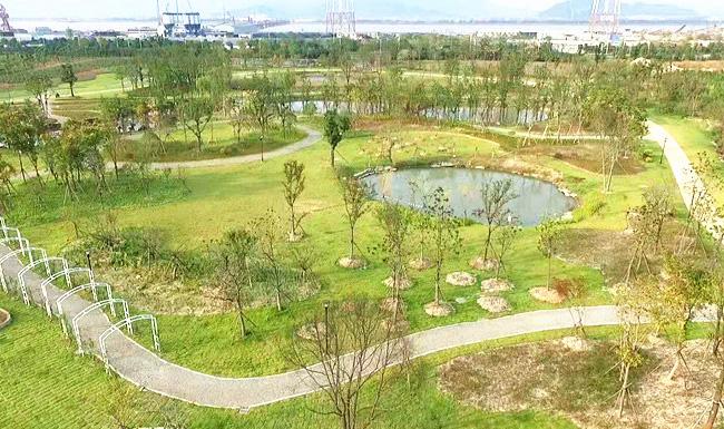 """臺州主城區不遠處""""藏""""著一個""""新花園"""",等你去打卡!"""